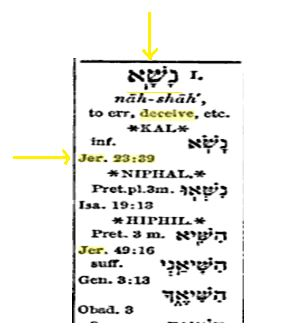 Hebrew word Nasha