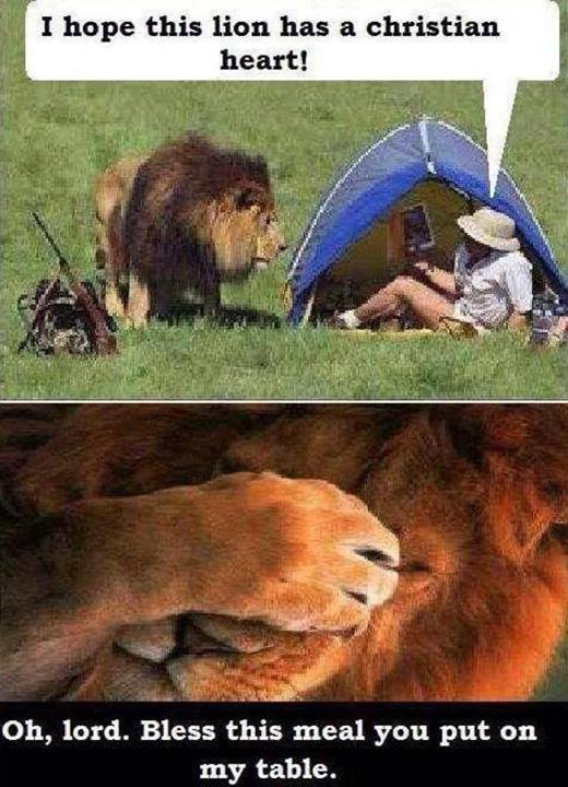lion.jpg?